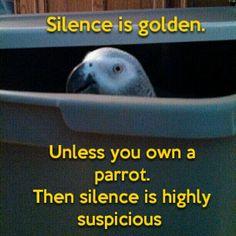 121715 silence