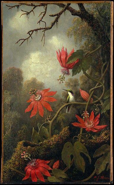 030416 hummingbird