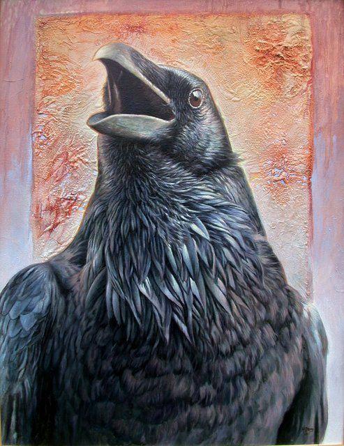 030416 raven