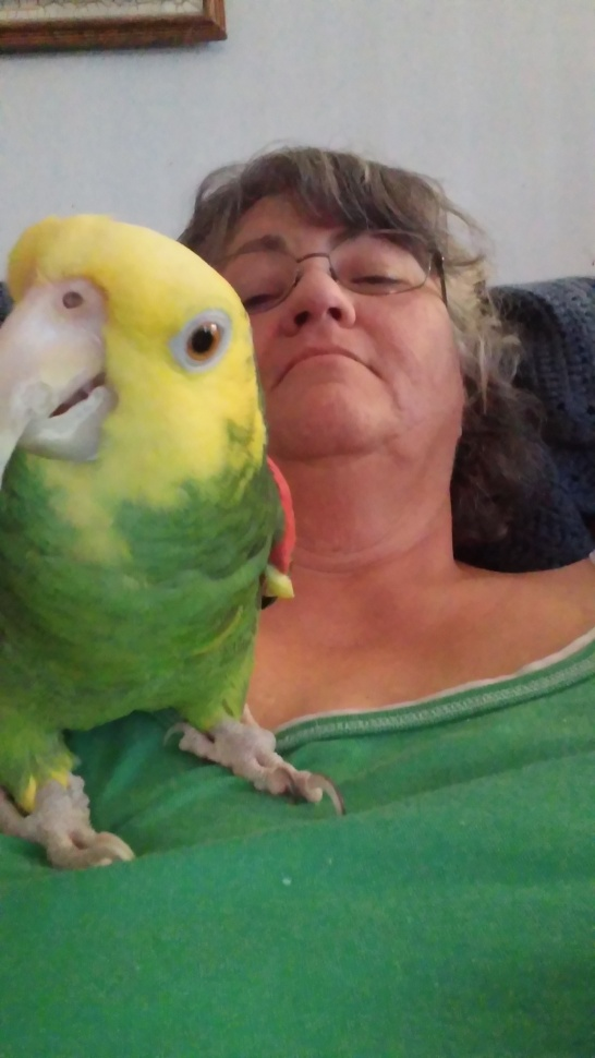 parrot selfie