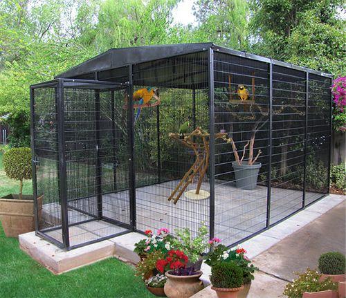 041416 aviary