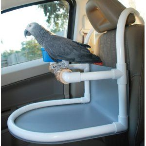 051916 car seat