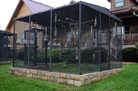 072816 another aviary