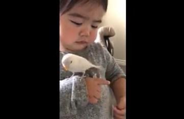 040217 girl with bird