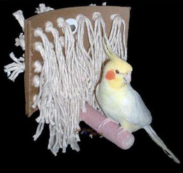 080617 happy bird toy
