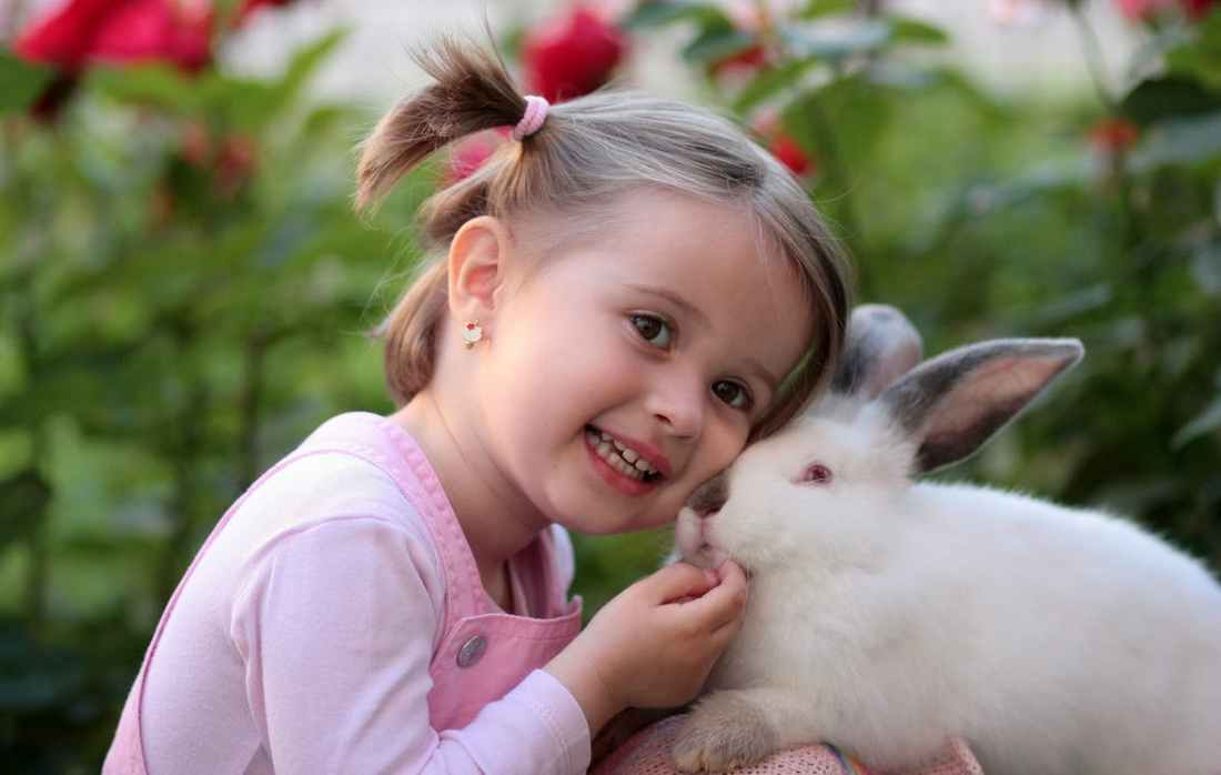 0415108 girl with bunny