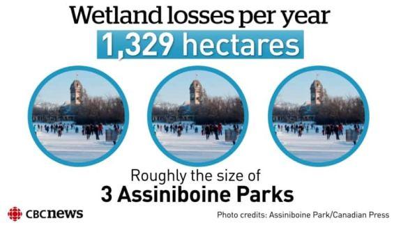 062418 loss of wetlands