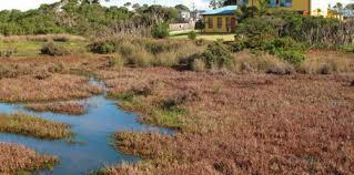 062418 wetlands australia