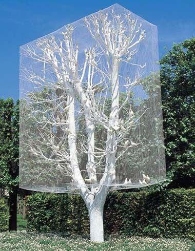 031719 tree aviary